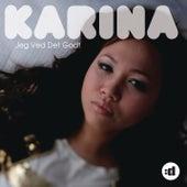 Jeg Ved Det Godt by Karina