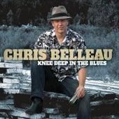Knee Deep In The Blues by Chris Belleau