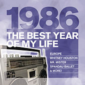 The Best Year Of My Life: 1986 von Various Artists