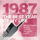 The Best Year Of My Life: 1987 de Various Artists