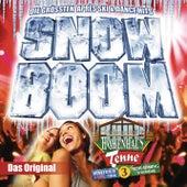 Snow Boom von Various Artists