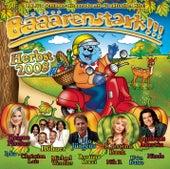 Bääärenstark!!! Herbst 2008 von Various Artists