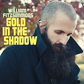 Gold In The Shadow de William Fitzsimmons