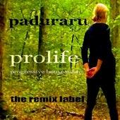 Prolife (Playing Positive Proghouse Music Album) de Various Artists