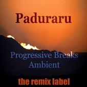 Progressive Breaks Ambient (Acid Melody on Dub Rhythms Album) de Various Artists