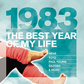 The Best Year Of My Life: 1983 von Various Artists