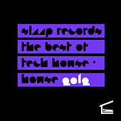 Slaap Records the Best of Tech House - House 2012 by Various Artists