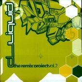 The Remix Project Vol. 2 by DJ Liquid