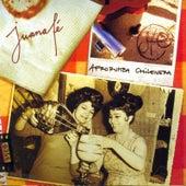 Afrorumba chilenera de Juana Fe