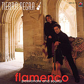 Furia Flamenca- Passionate And Soulful by Tierra Negra