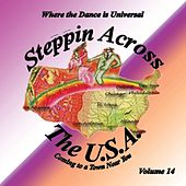 Steppin Across the Usa, Vol. 14 von Various Artists