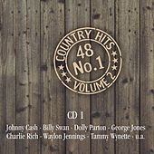 48 Nr. 1 Country Hits von Various Artists