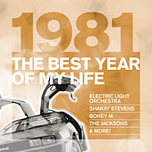 The Best Year Of My Life: 1981 von Various Artists