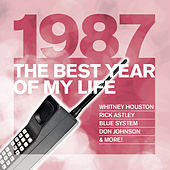 The Best Year Of My Life: 1987 von Various Artists