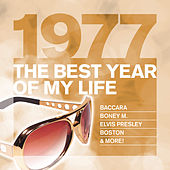 The Best Year Of My Life: 1977 von Various Artists