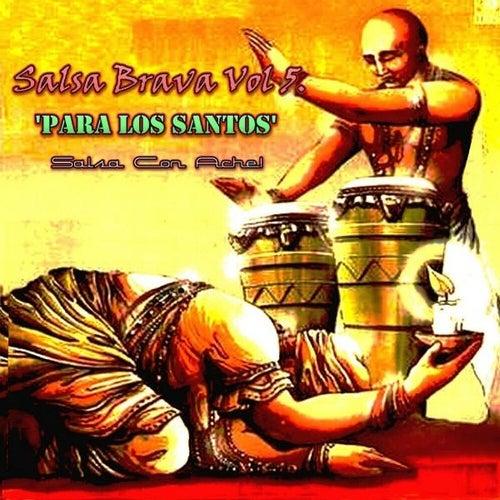 Salsa Brava, Vol. 5 by Various Artists