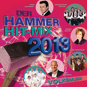 Der Hammer Hit-Mix 2013 - Volksmusik van Various Artists
