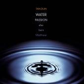 Water Passion after St. Matthew by Maya Beiser