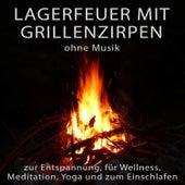 Lagerfeuer mit Grillenzirpen ohne Musik zur Entspannung, für Wellness, Meditation, Yoga und zum Eins von Entspannungsmusik