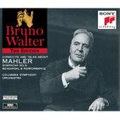Mahler:  Symphony No. 9, A Talking Portrait, A Working Portrait de Bruno Walter