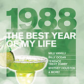 The Best Year Of My Life: 1988 von Various Artists
