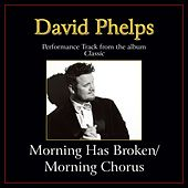 Morning Has Broken / Morning Chorus (Medley) Performance Tracks by David Phelps