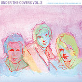 Under the Covers, Vol. 2: A Tribute to Paul Collins, Peter Case and Jack Lee by Various Artists
