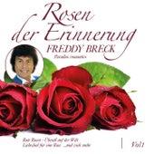 Rosen der Erinnerung, Vol. 1 (Paradiso romantico) de Freddy Breck