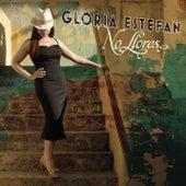 No Llores de Gloria Estefan