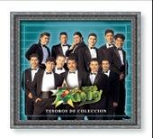 Tesoros De Coleccion de Banda Maguey
