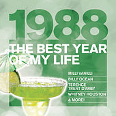 The Best Year Of My Life: 1988 de Various Artists