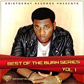 Best of Burn Series, Vol. 1 von Burna Boy
