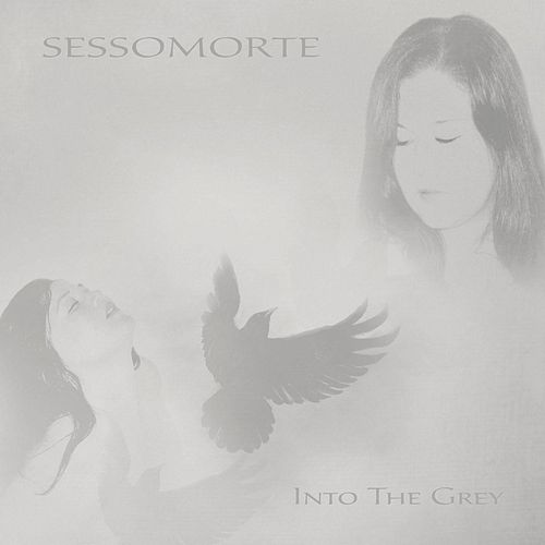 Into the Grey by Sessomorte