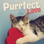 Purrfect Love by Various Artists