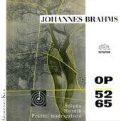 Brahms: Liebeslieder by Pavel Štěpán