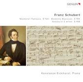Schubert: Wanderer-Fantasie, D 760 - Moments Musicaux, D 780 - Sonata in C minor, D 958 von Konstanze Eickhorst