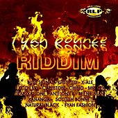 Fyah Bounce Riddim de Various Artists