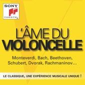 L'âme du violoncelle de Various Artists