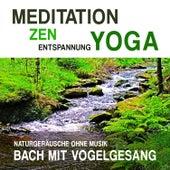 Meditation, Zen, Yoga und Entspannung mit Naturgeräuschen ohne Musik: Bach mit Vogelgesang by Meditation Zen Yoga Entspannung