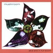Alive and in Full Bloom de Mushroom