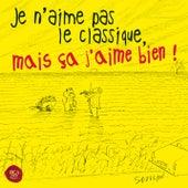 Je N'aime Pas Le Classique Mais Ca J'aime Bien von Various Artists
