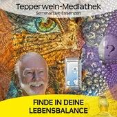 Finde in deine Lebensbalance by Kurt Tepperwein