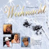 Warten auf Weihnacht - Die beliebtesten Lieder zum  Weihnachtsfest von Various Artists