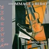 Hommage à Berio de Diego Tosi