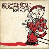 Love Hurts von Incubus