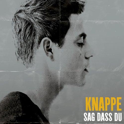 Sag dass Du by Alexander Knappe
