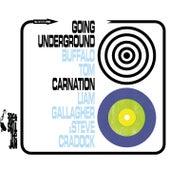 Going Under Ground / Carnation von Buffalo Tom