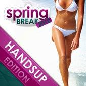 Springbreak 2013 - Handsup Edition von Various Artists