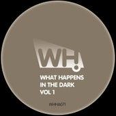 What Happens in the Dark Vol 1 von Various Artists