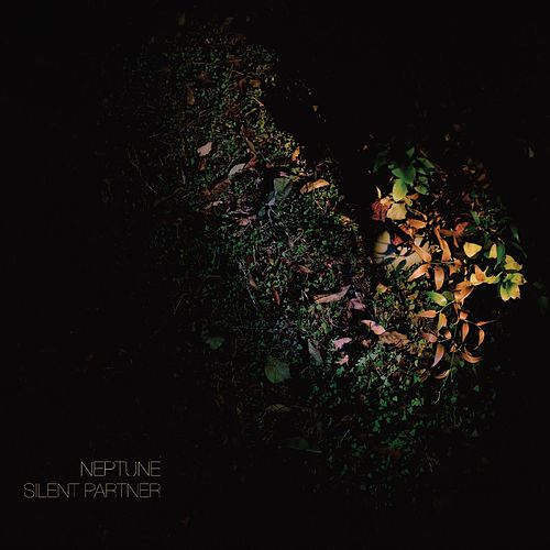 Silent Partner by Neptune
